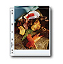 Archival Photo Pages Holds Two 8.5 x 11in. Prints - 100