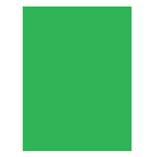 10x10 ft. Infinity Lint Free ProCloth Background (ProChroma Green) Image 0