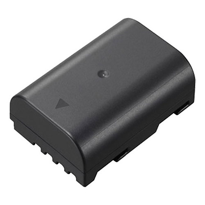 DMW-BLF19 Rechargeable Lithium-ion Battery Pack Image 0