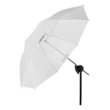 Shallow Translucent Umbrella (Medium, 41 IN.) Image 0