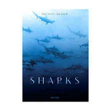 Sharks By Michael Muller - Hardcover Book Image 0