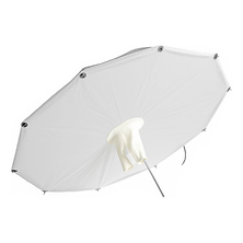 SoftLighter Umbrella with Removable 8mm Shaft (60 In.) Image 0