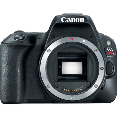 EOS Rebel SL2 Digital SLR Body Image 0