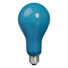 BCA Lamp, 250 Watts/115-120 Volts - Blue Image 0