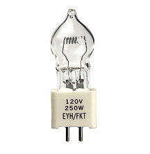 EYH Lamp, 250 watts/120 volts Image 0