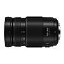 100-300mm, F4.0-5.6 II, Lumix G Vario Lens for Mirrorless Micro Four Thirds Mount Thumbnail 1