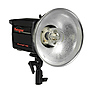 PowerLight 1250 Monolight, 500ws