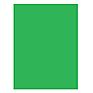 10x10 ft. Infinity Lint Free ProCloth Background (ProChroma Green)