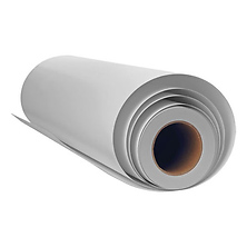 24 in X 100 ft Slickrock Metallic Pearl Paper Roll Image 0