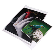 5x7 In. Clear Bags (Package of 100) Image 0