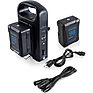 2 x Micro-Series 98Wh Li-Ion V-Mount Batteries with Dual V-Mount Battery Charger Kit