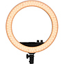 Halo 14 Dimmable Adjustable Bicolor 14 in. LED Ring Light Thumbnail 4