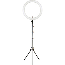 12 in. LED Bi-Color Ring Light Image 0